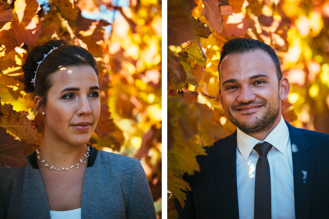 Portraits zwischen Weinreben