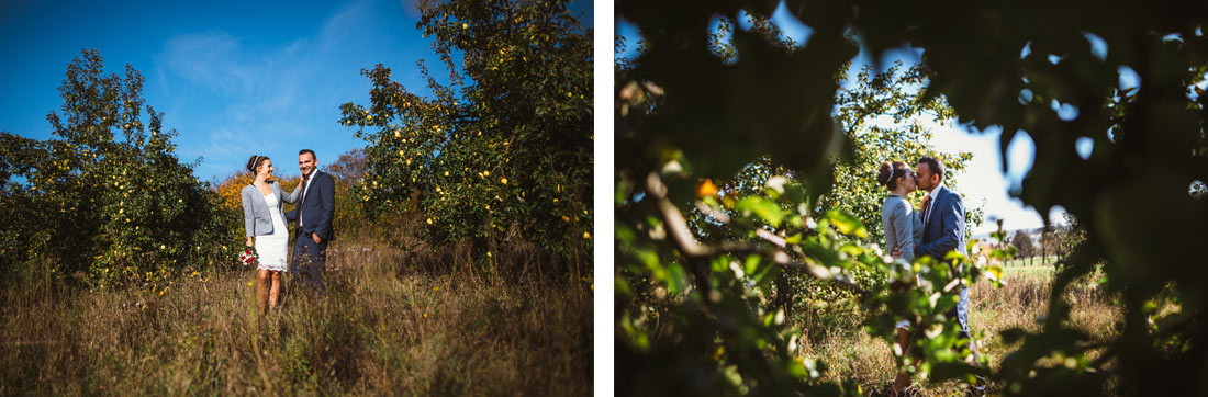 Hochzeitspaar steht vor Apfelbäumen