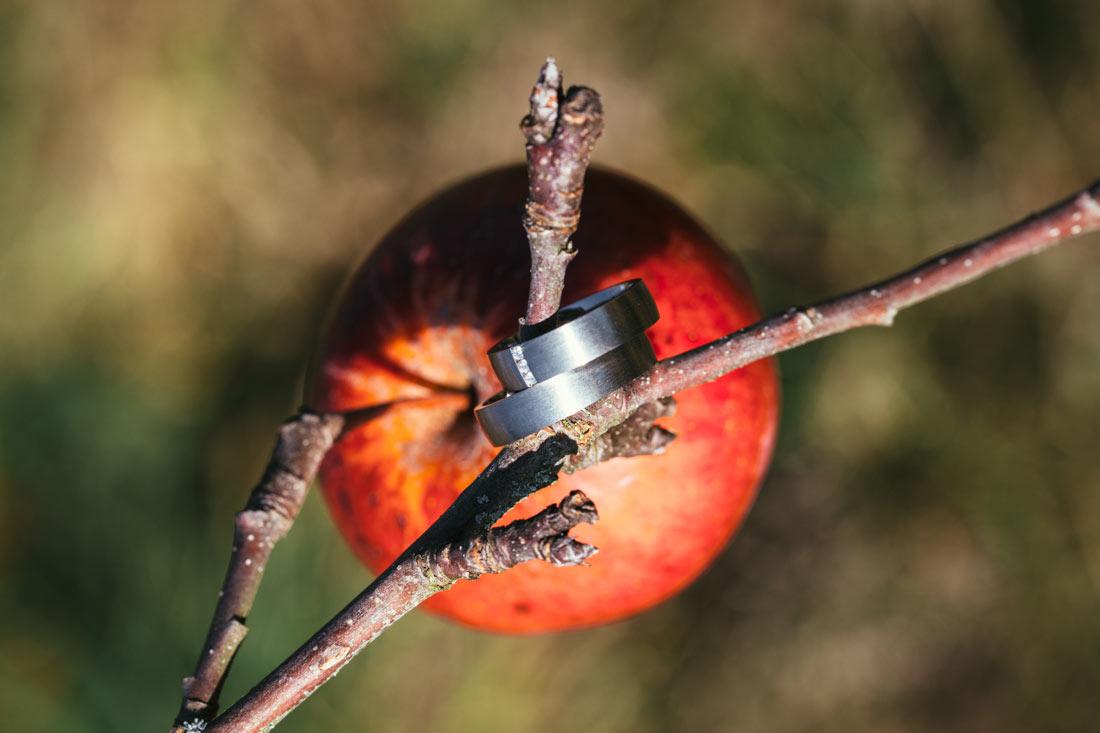 Eheringe am Apfelbaum