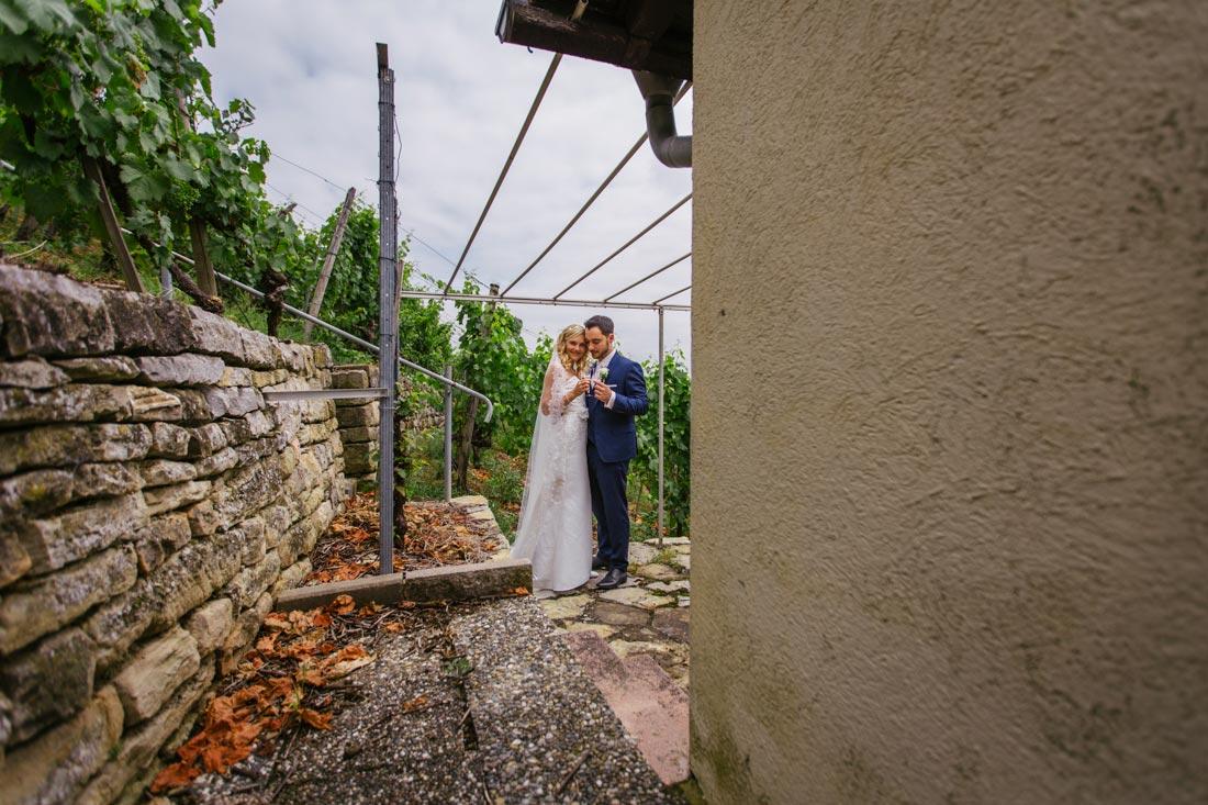 Paarbilder in den Weinbergen