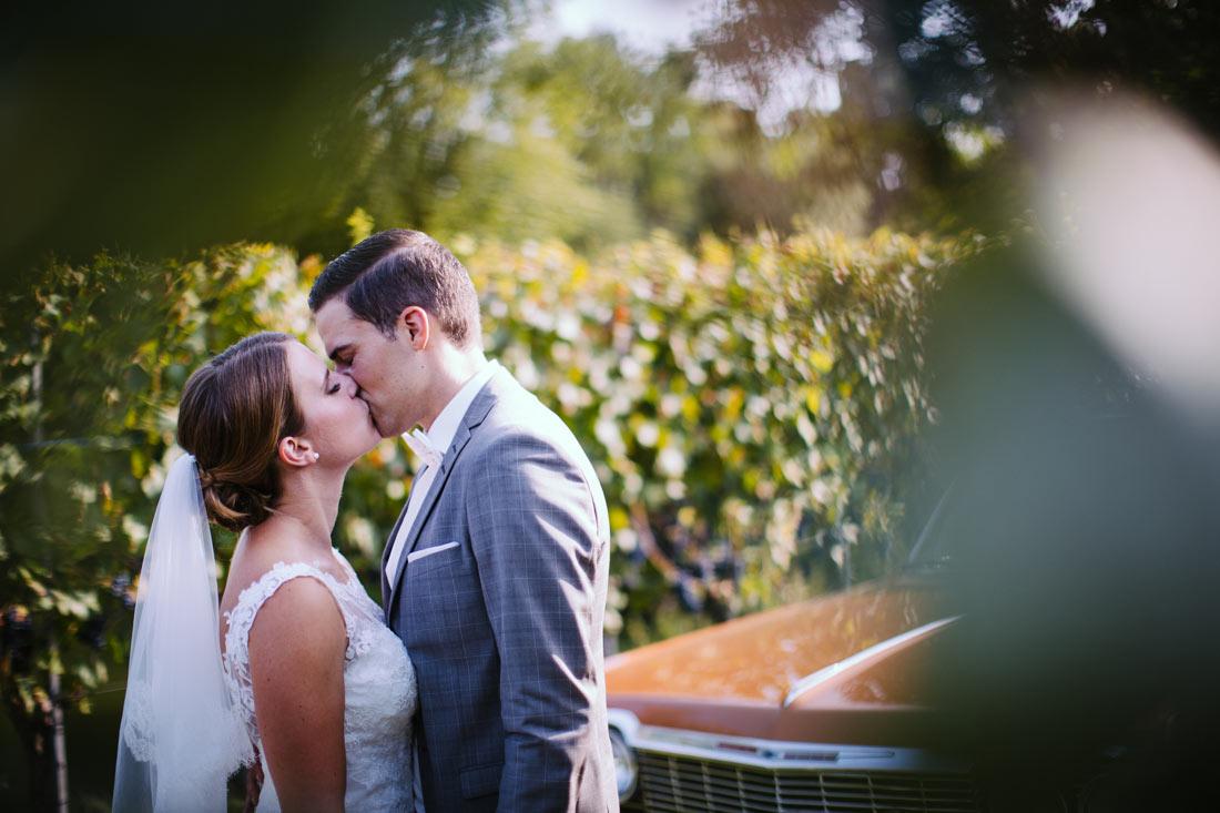 Hochzeitspaar küsst sich in den Weinbergen