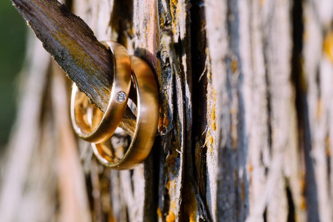 Goldene Ringe am Baum