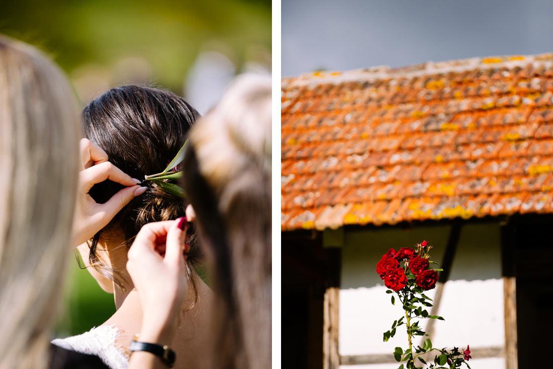 Rosen auf dem Steinbachhof