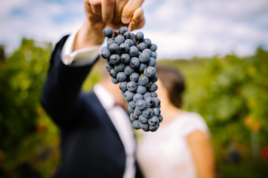 Weintrauben zensieren ein Kuss