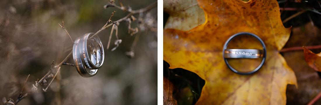 Ringe im Herbst